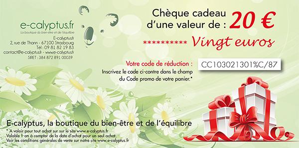 cheque-cadeau-20-600x298.jpg