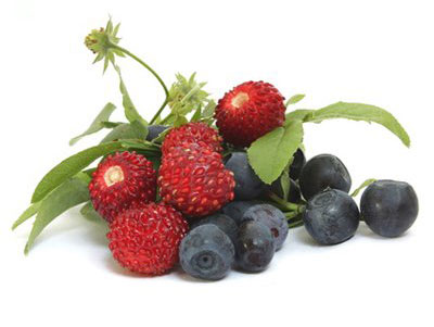 Fruitsbois2