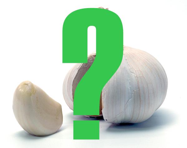 garlic-5-mystere.jpg