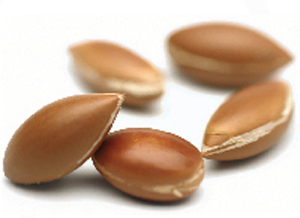 huile-argan-fruits.jpg